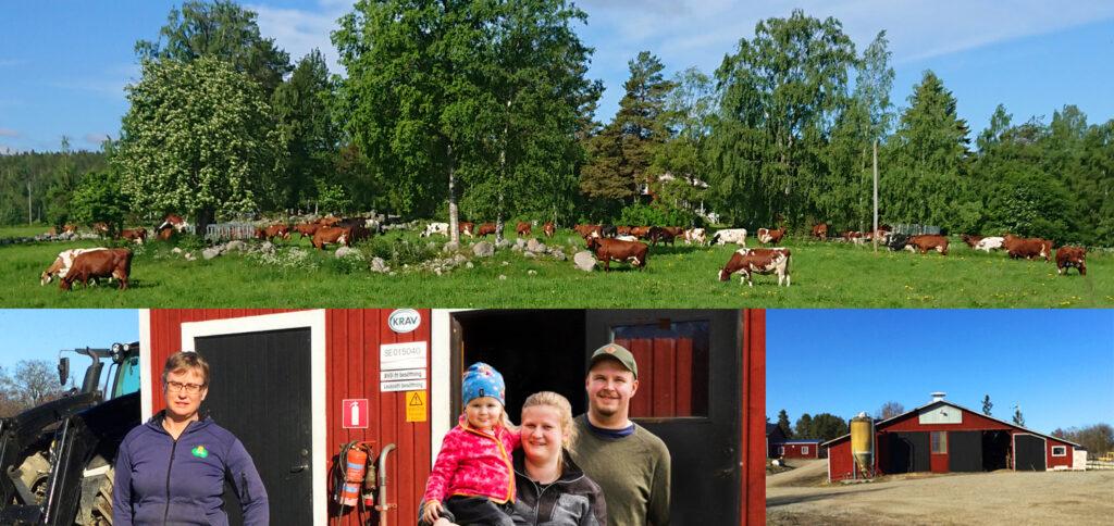 Lena Hägglunds gård i Njutånger.