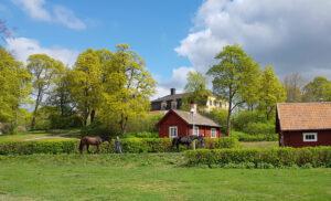 Strömsholms vackra omgivningar